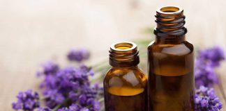 Lavender Oil Benefits for Healing