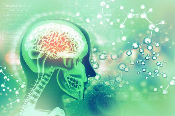 Cognitive Enhancers - Nootropics