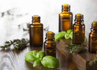 Best Top 12 Essential Oils You Should Not Live Without