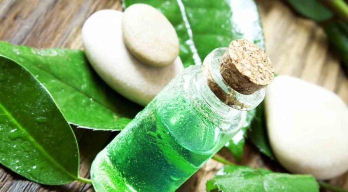 How to Use Tea Tree Oil for Beauty Breakout Crisis